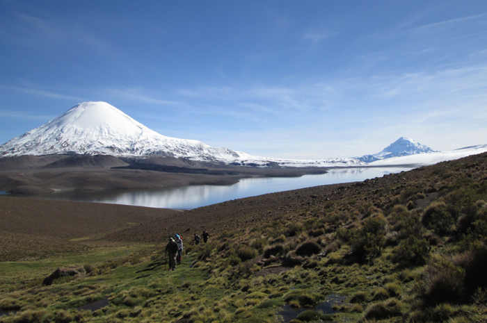 Parinacota from the west after a fresh snowfall.